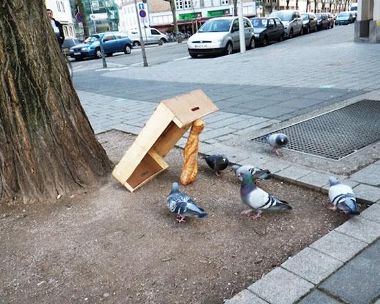 pigeonTrap-streetart